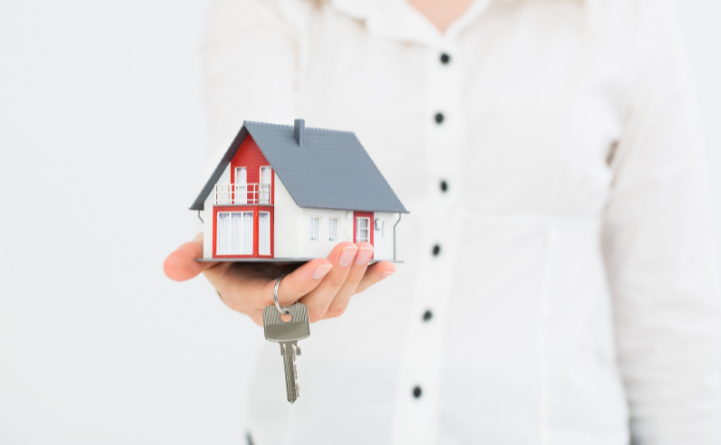 person holding a small house in their hand